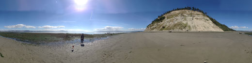 Whidbey Island Panorama